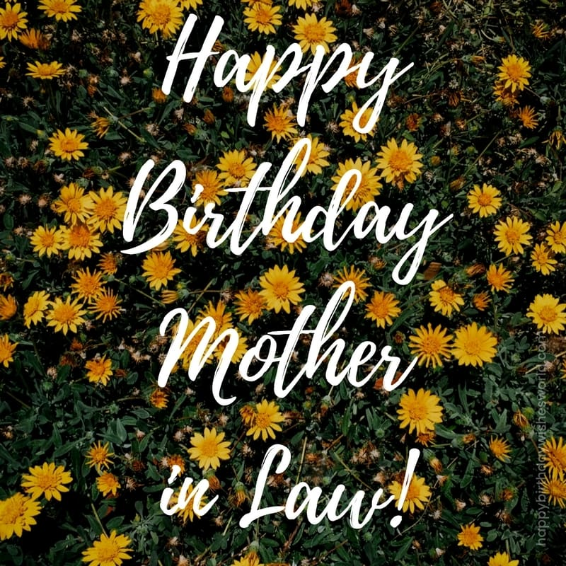 120 happy birthday mother in law wishes find the perfect birthday wish happy birthday mother in law m4hsunfo